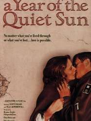 A Year of the Quiet Sun