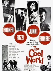 The Cool World